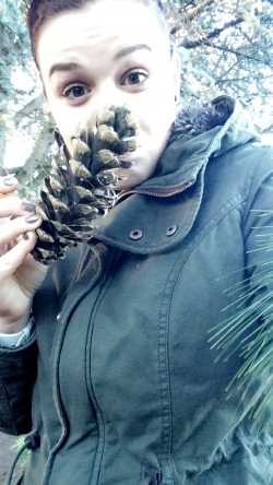 Pomme de pin Perrine